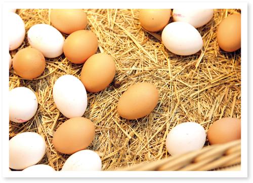 Eier streicheln
